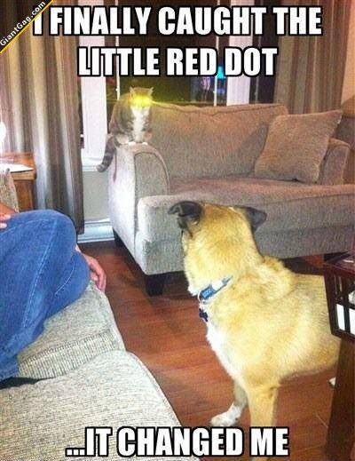 The Red Dot Changed Me