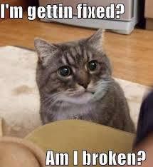 Am I Broken ?
