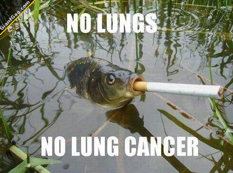 No Lungs, No Lung Cancer