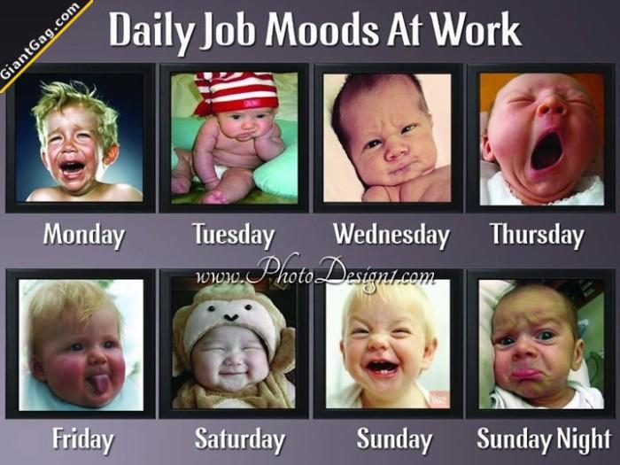 Daily Job Moods At Work
