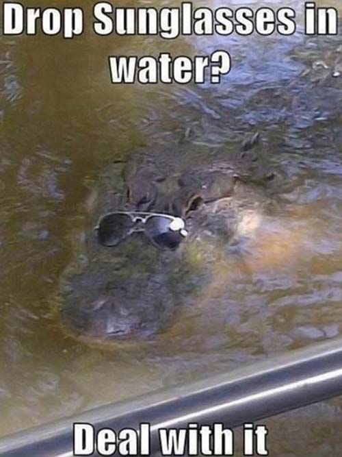 Drop Sunglasses In Water ? Deal With It