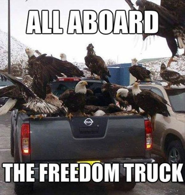 All Aboard, The Freedom Truck