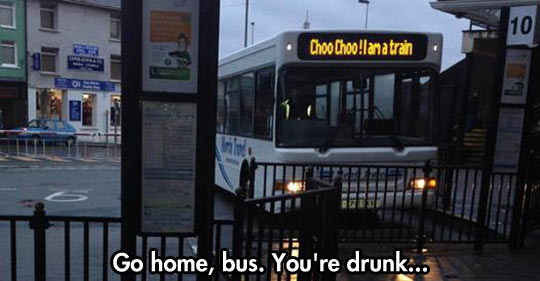 Go Home, Bus. You're Drunk ...