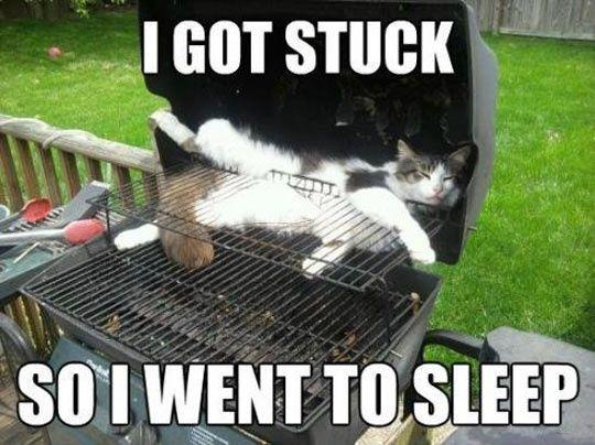 I Got Stuck So I Went To Sleep