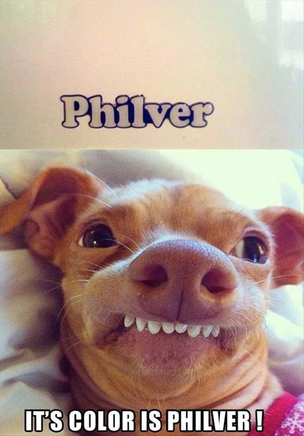 It's Color Is Philver