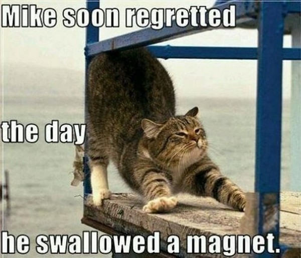Mike Soon Regretted The Day He Swallowed A Magnet