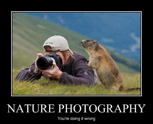 Nature Photography, You're Doing It Wrong
