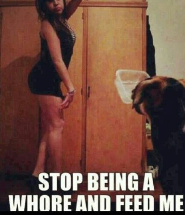 Stop Being A Whore And Feed Me