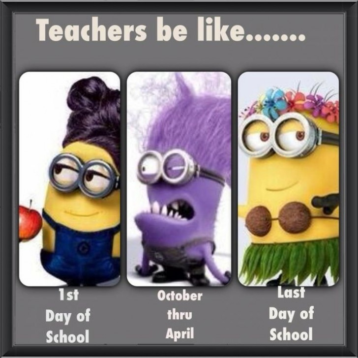 Funny Quotes For Teachers: Teachers Be Like Minions
