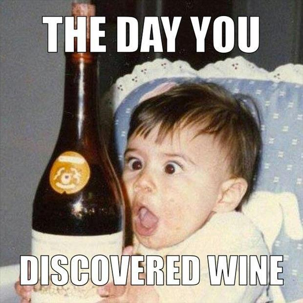 The Day You Discovered Wine