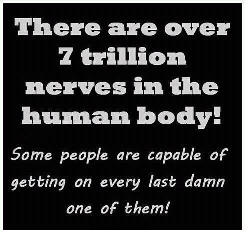 There Are Over 7 Trillion Nerves In The Human Body ...