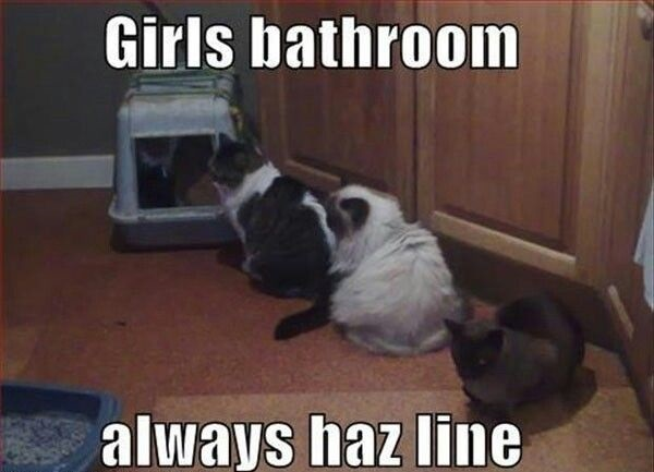 Girls Bathroom, Always Haz A Line