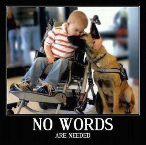 Handicap Kid Hugging A Dog, No Words Are Needed
