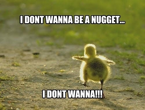 I Don't Wanna Be A Nugget !