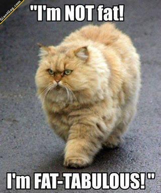I'm Not Fat I'm Fatabulous
