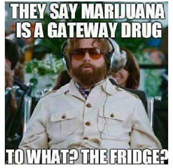 They Say Marijuana Is A Gateway Drug ...