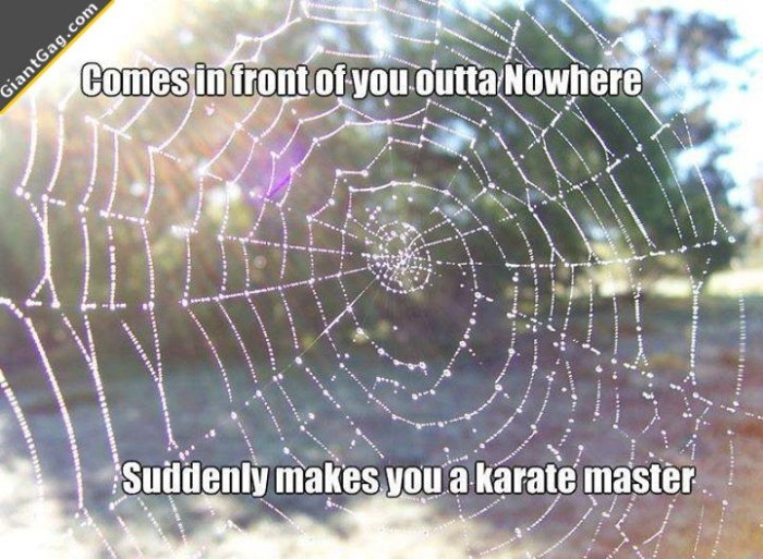 Suddenly You're A Karate Master