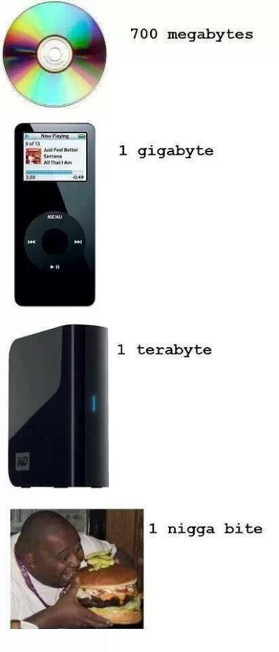 700 Megabytes, 1 Gigabyte, 1 Terabyte, 1 Nigga Bite